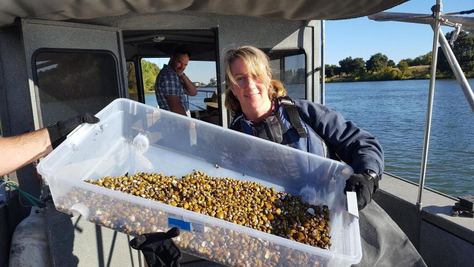 Sharon Merker (Regional San – Wastewater Source Control Section) with a haul of clams from the Sacramento River. (Photo: Lisa Thompson)
